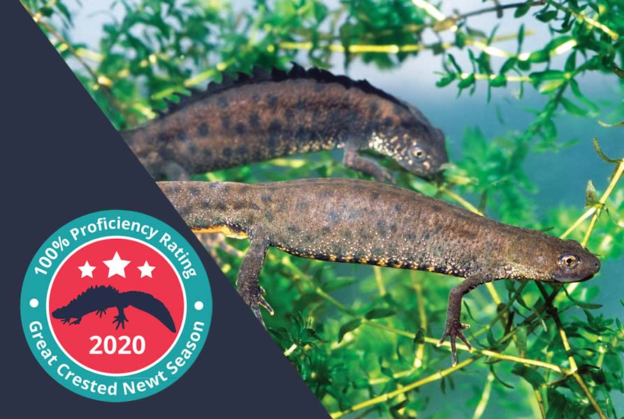 100% GCN eDNA proficiency test score for the third year running 2020