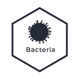 eDNA from Water - Bacteria