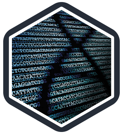 Robust and replicable bioinformatics pipelines